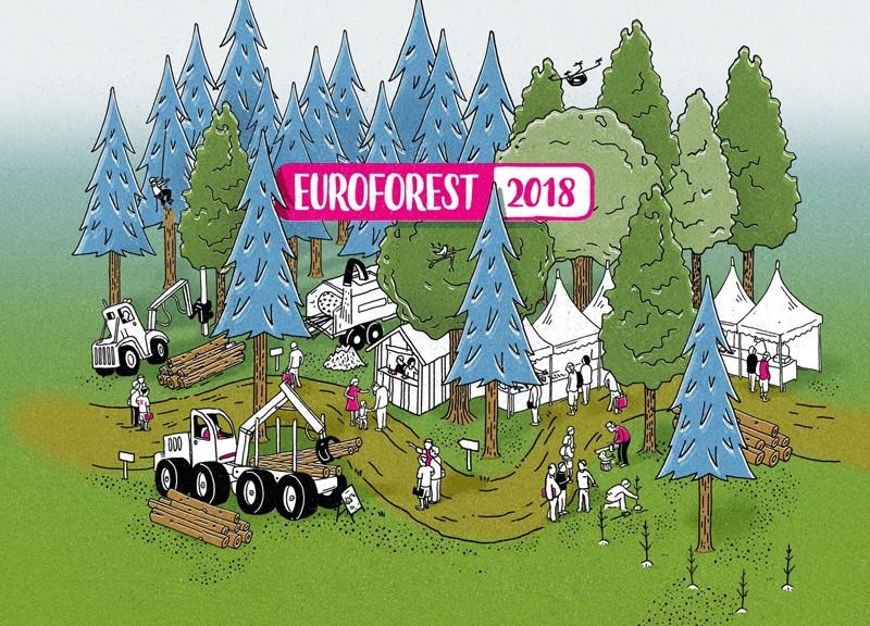 image-Euroforest
