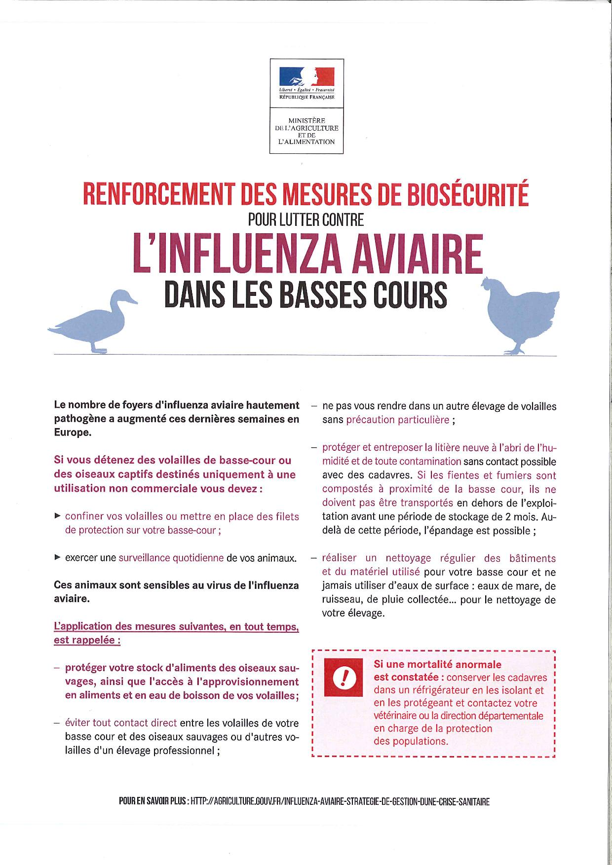 affiche influenza aviaire-page-001